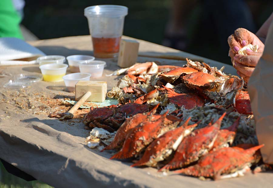 Post image for St. Mary's County Crabfest